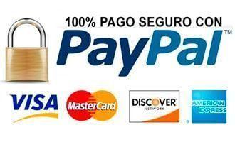 paypal pago - Cuanto Vale Un Euro Pago Consulta